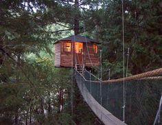 Treehouse in Oregon treehous treesort, tree fort, treehous hotel, tree houses, treehouse resorts, place, treehous resort, tree house hotel oregon, thing