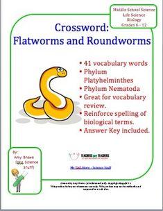 FREEBIE:  Flatworm and Roundworm (Platyhelminthes and Nematoda) Crossword Puzzle