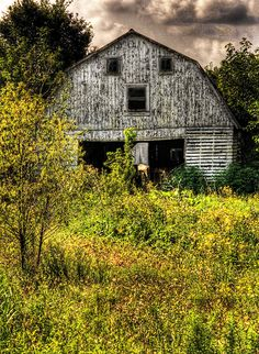 I love old barns. This one is in Monroe County Michigan.