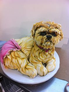 Shi-Tzu by Karen Portaleo/ Highland Bakery. Crazy amount of detail in this! Wow!