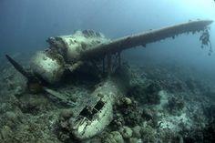 Google Image Result for http://underwater.com.au/content/9944/plane_wreck.jpg