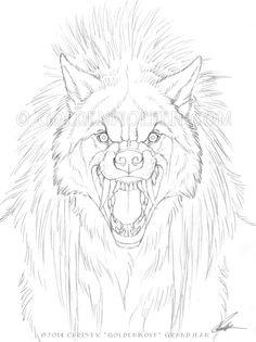 """Hackles"" Pencil on 9 X 12 smooth Bristol. I do love a nice spikey, hackley werewolf! Art by Christy ""Goldenwolf"" Grandjean"