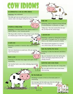 Poster with cow idioms. poster