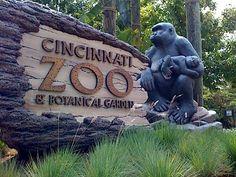 visit the Cincinnati Zoo..check!