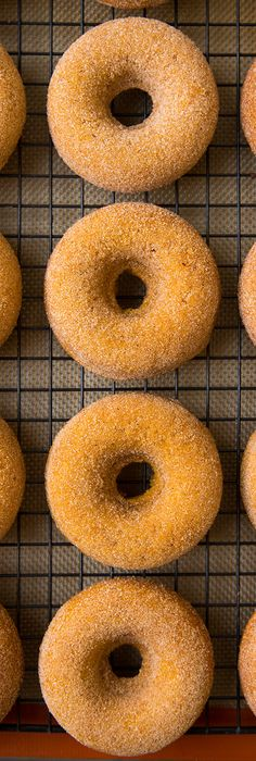 Pumpkin Doughnuts {Baked} - These doughnuts are irresistible! So soft and moist and loaded with pumpkin/cinnamon flavor.