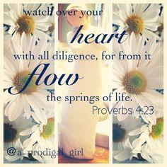 Proverbs 4:23