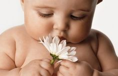 cutest babi, weight loss, daisi, baby pictures, flower children, 6 month photos, baby photos, kid, chubby cheeks