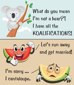 Koala and watermelon puns for kids
