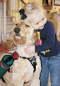 Service Dog carries live saving oxygen tanks for 2 yr old girl with rare disease