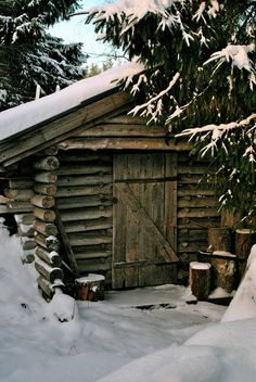 I want to be here, sitting by a warm fire with a blanket on my lap, drinking a hot cup o' joe, & reading a great book!