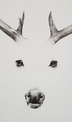 Totem by Mari triaℓ. Minimalistic drawing of a deer yet still very clear
