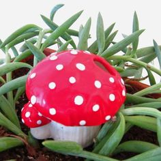 Mushroom plant waterer $14