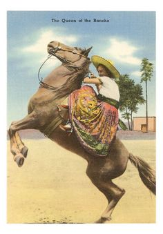✢ STYLE ✢ Viva Mexico | Queen of the Rancho, Charra on Horse