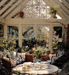 bookmarks, tea time, secret gardens, window, hanging plants, breakfast, place, sunroom plants, sun room