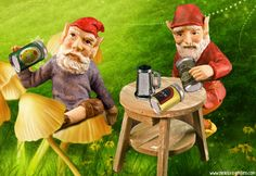 Gnomes love beer!  Scenes from our father's day gnome miniature fairy gardens.