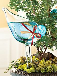 Bird Plant Feeders - Glass Plant Feeders Water Plants while Traveling | Solutions, $19.98 for 2