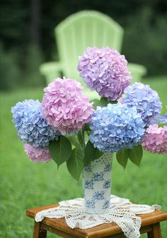 Sweet pastel hydrangeas,,,,joli  joli  joli ???**+