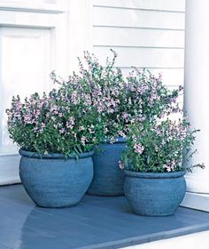 Container Gardens: Matching pots in different sizes add visual appeal to a porch or stoop.