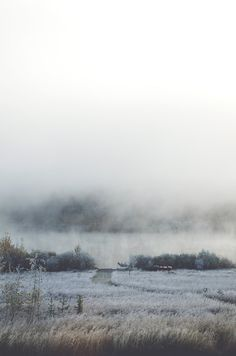 Cold and misty.