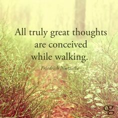 All truly great thoughts are conceived while walking. So true!