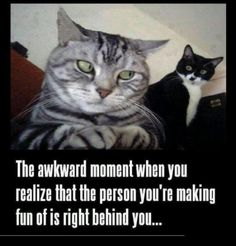 Funny Memes: The Awkward Moment When