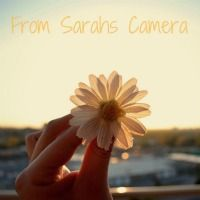 From Sarah's Camera. An Apostolic Pentecostal Blog. #blogs