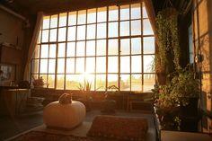 giant window