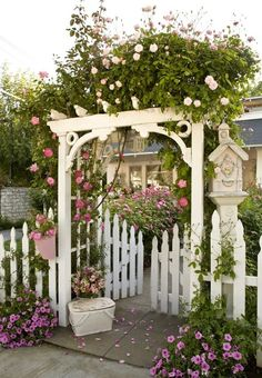 Picket fence and arbor... * back yard entrance? !?