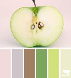 color sliced