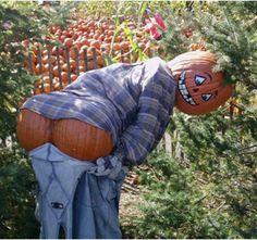 Gardens Inspired: Create a scarecrow ideas