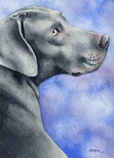 WEIMARANER Dog Art Print Signed by Artist DJ by k9artgallery   WATERCOLOR