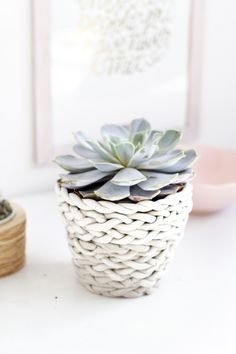 Plaited Planter DIY