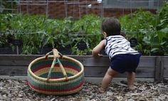 Secrets to Creating a Child-Friendly Garden