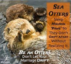 Be an Otter!