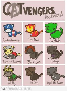 CATvengers Assemble! Amazing!
