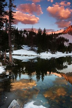 A beautiful sunrise reflection in the Snowy Range of Wyoming. Reflections, Wyoming, colors, and trees all relate to the pic of the day.