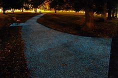 Glow-In-The-Dark Paths Could Be The Future Of Street Lighting | Popular Science
