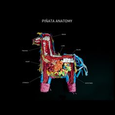 Piñata Anatomy via Carmichael Collective