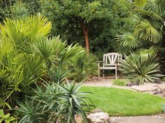 | Landscaping Ideas
