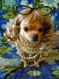 Royal Princess?