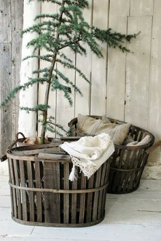 A simple and natural Christmas display. A Nautical crate gives the potted evergreen tree a home for the winter.