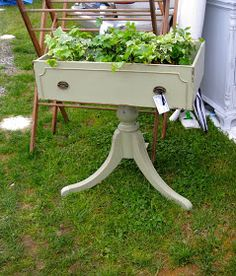 Cute idea for an old drawer by  The Brimfield Fair!