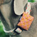 30+ Crafty Projects for Pets