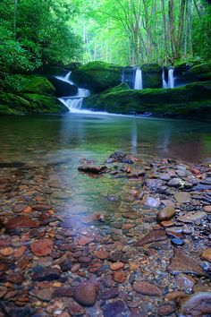 """""""In rivers, the water that you touch is the last of what has passed and the first of that which comes; so with present time."""" ~Leonardo da Vinci (This river is in the Great Smokey Mountains)"""
