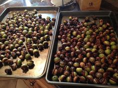 Two It Yourself: Acorn decorations: How to dry acorns and decorate with them for fall