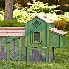 Suffolks Chicken Coop & Run, Green #WilliamsSonoma