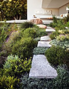A nice alternative to a green lawn!  // Great Gardens & Ideas //