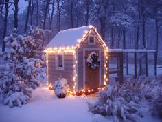 Chicken Coop in the Snow --- oh yeah, baby:  LIGHTS