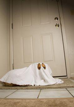 Halloween pup. Boo!