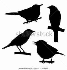 stock vector : vector silhouettes of the birds sitting on branch tree